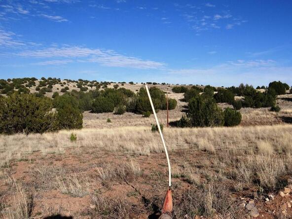522 Sierra Verde Ranch, Seligman, AZ 86337 Photo 4