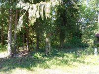 Home for sale: 11054 Mission Ln., Glacier, WA 98244