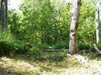 Home for sale: Xx County Rd. 67, Grand Marais, MN 55604