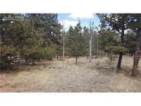 Home for sale: 136 Blackhawk Cir., Florissant, CO 80816