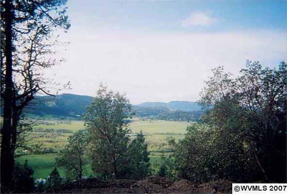 981 Wilbur Cemetary Rd., Wilbur, OR 97494 Photo 7