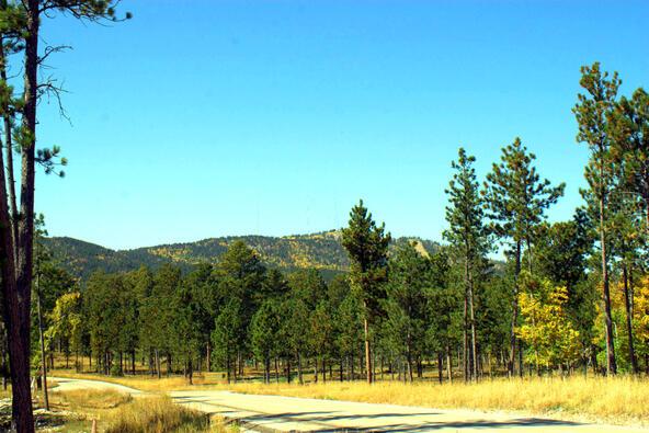 Lot 5, Powder House Trail, Lead, SD 57754 Photo 4