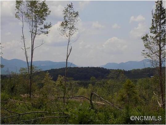 00 Polk County Line Rd., Rutherfordton, NC 28139 Photo 2