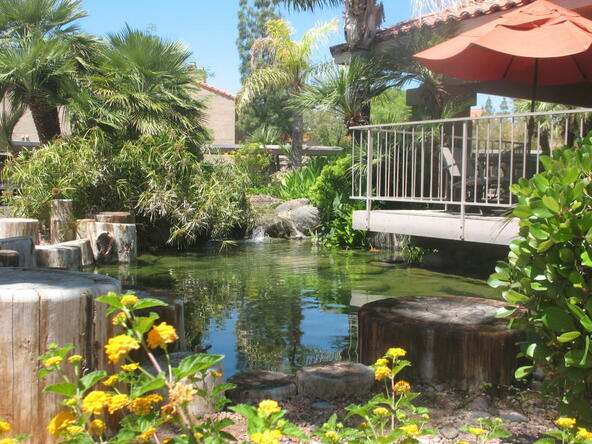 8787 E. Mountain View Rd., Scottsdale, AZ 85258 Photo 5