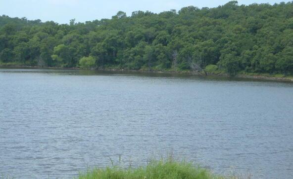 L564 Lake Horizon Ct., Sunset, TX 76270 Photo 5