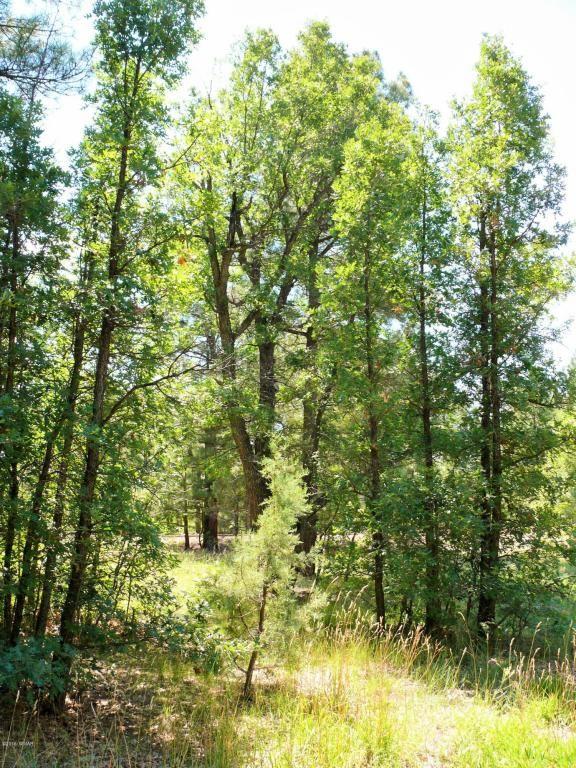 1540 S. Spruce Ln., Show Low, AZ 85901 Photo 44