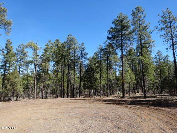1090 W. Sadler Ln., Lakeside, AZ 85929 Photo 2