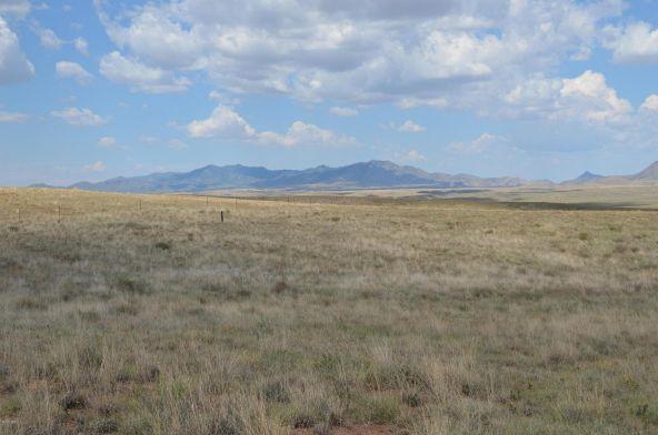 20 la Montana, Sonoita, AZ 85637 Photo 9