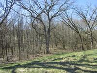 Home for sale: Lt3 Hillside Trl, Delavan, WI 53115