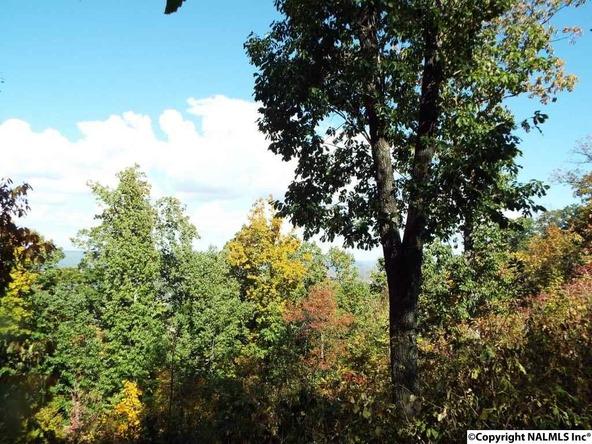 11 S. County Rd. 89, Mentone, AL 35984 Photo 18