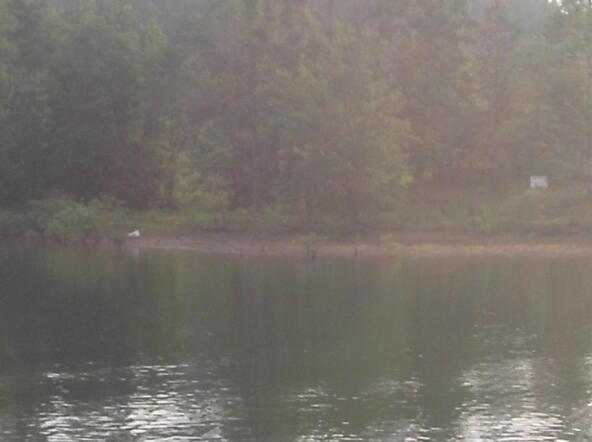 392 Cord 907, Crane Hill, AL 35053 Photo 1