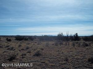 5301 S. Lariat Rd., Williams, AZ 86046 Photo 4