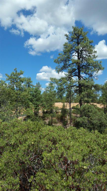 700 S. Monument Valley Dr., Payson, AZ 85541 Photo 7