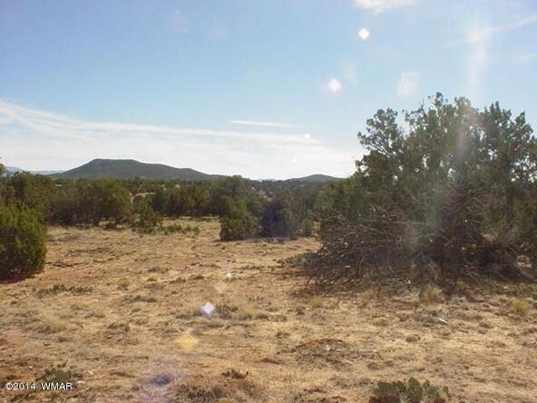 1b N. 8690, Concho, AZ 85924 Photo 22