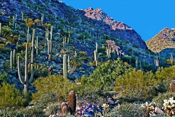 11418 E. Hideaway Ln., Scottsdale, AZ 85255 Photo 13