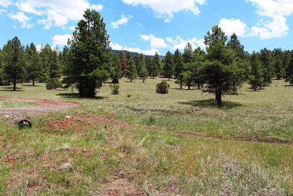 3252 N. Chickadee Trail, Flagstaff, AZ 86001 Photo 43
