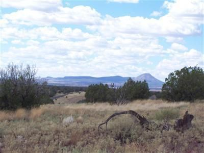 204 Juniperwood Rnch Un 3 Lot 204, Ash Fork, AZ 86320 Photo 7