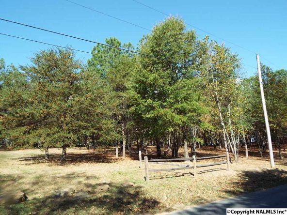 16 S. County Rd. 89, Mentone, AL 35984 Photo 14