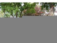 Home for sale: 2315 Rebecca Dr., Champaign, IL 61821