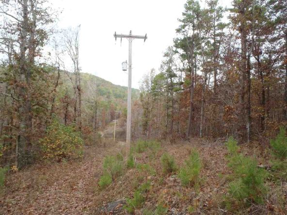 108 Buckthorn, Mountain Pine, AR 71956 Photo 1