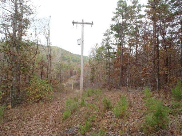 108 Buckthorn, Mountain Pine, AR 71956 Photo 6