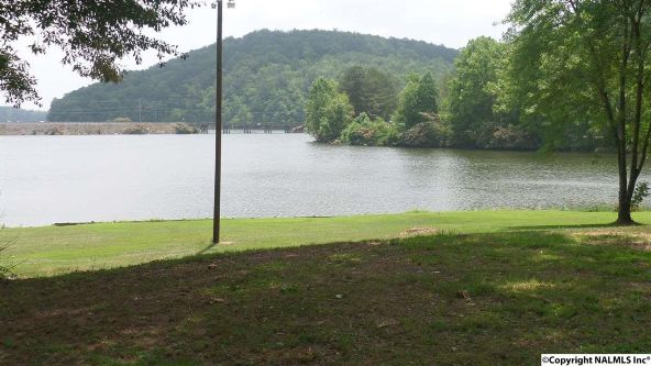 720 County Rd. 365, Leesburg, AL 35983 Photo 4