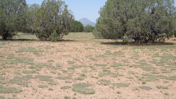 261 Juniperwood Ranch Lot 261, Ash Fork, AZ 86320 Photo 46