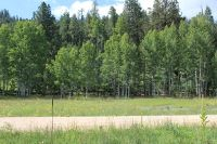 Home for sale: Lot Acr 1009, Greer, AZ 85927