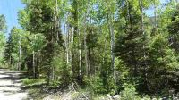 Home for sale: Block 6 Lot 11 Hwy. 150, Taos Ski Valley, NM 87525
