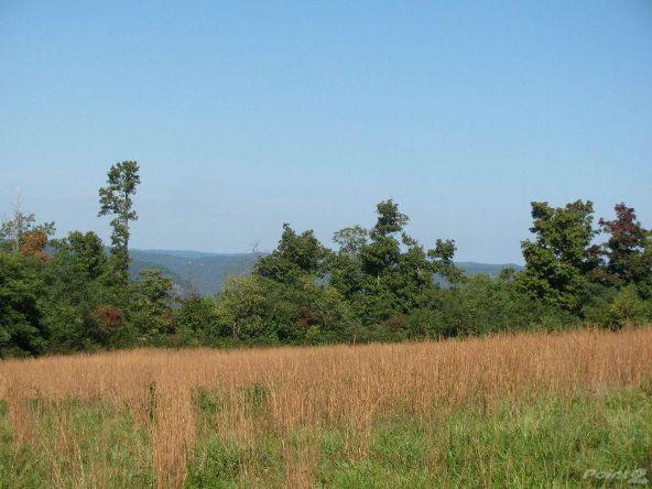 Smith Mountain Rd., 97 Acres, Jasper, AR 72628 Photo 4