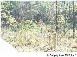 29 Augusta Rd., Guntersville, AL 35976 Photo 6