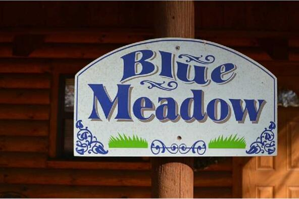 13819 187 Hwy. Blue Meadow, Eureka Springs, AR 72631 Photo 2