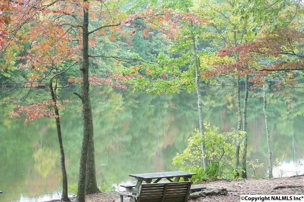 3 South Bluff Trail, Huntsville, AL 35803 Photo 33