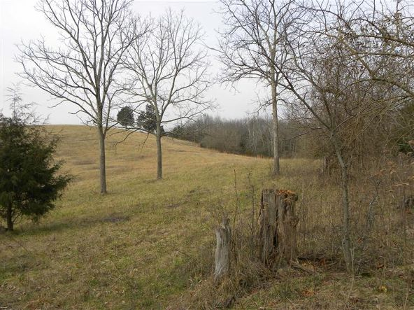 1739 Graves Rd., Stamping Ground, KY 40379 Photo 5