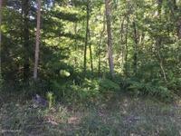 Home for sale: 0 Sweeter Rd., Twin Lake, MI 49457