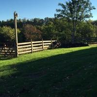 Home for sale: 5627 Elgood Mountain Rd., Princeton, WV 24739