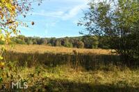 Home for sale: 525 Amys Creek Rd., Clarkesville, GA 30523