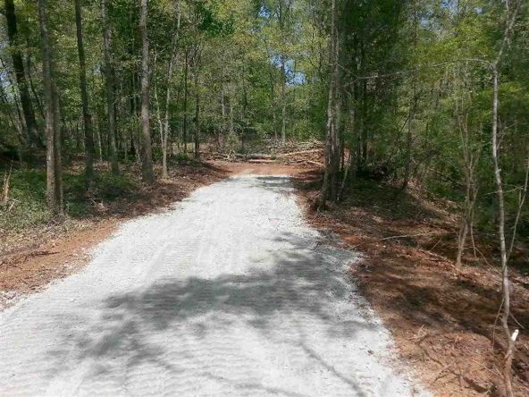 133 Honeycomb Trail, Central, SC 29630 Photo 4