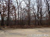 Home for sale: Willmore, Lake Ozark, MO 65049