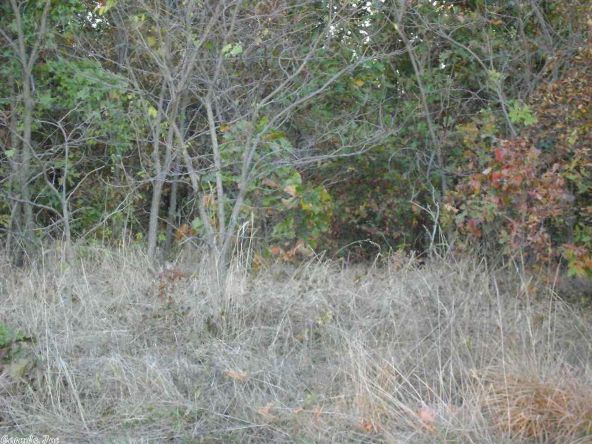 1010 & 1102 Cook Rd., Horseshoe Bend, AR 72512 Photo 14