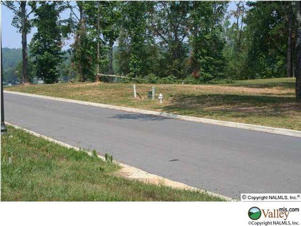 101 Lake Creek Dr., Guntersville, AL 35976 Photo 19