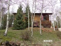 Home for sale: 45 Deer Horn Dr., Cripple Creek, CO 80813