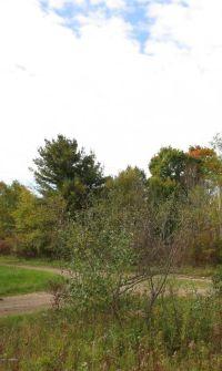 Home for sale: Lot 460 Pawnee Trail, Evart, MI 49631
