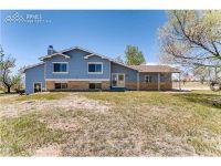 Home for sale: 10250 Raptor Loop, Peyton, CO 80831