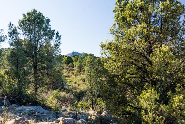 17955 W. Buckhorn Dr., Peeples Valley, AZ 86332 Photo 11