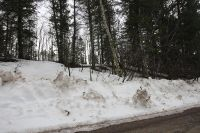 Home for sale: Lot 31 North Forest Dr., Star Valley Ranch, WY 83127