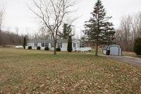 Home for sale: 531 Ewers Rd., Leslie, MI 49251