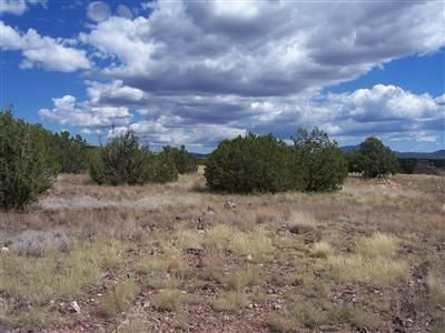 204 Juniperwood Rnch Un 3 Lot 204, Ash Fork, AZ 86320 Photo 8