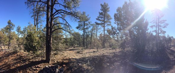 1525 S. Twin Peak Trail, Show Low, AZ 85901 Photo 1