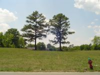 Home for sale: 0 Fifth Avenue, N., Lewisburg, TN 37091